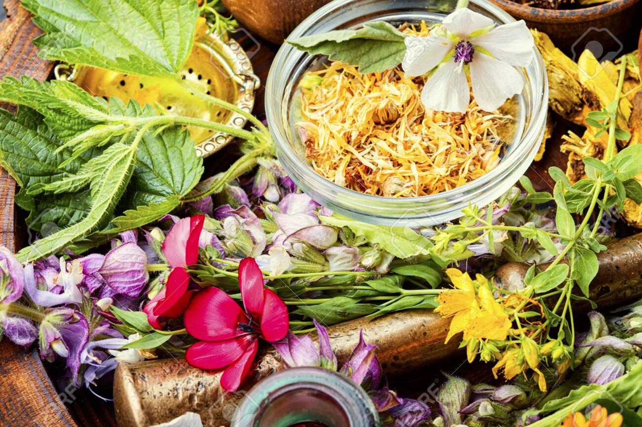 دبلومة الطب البديل والأعشاب