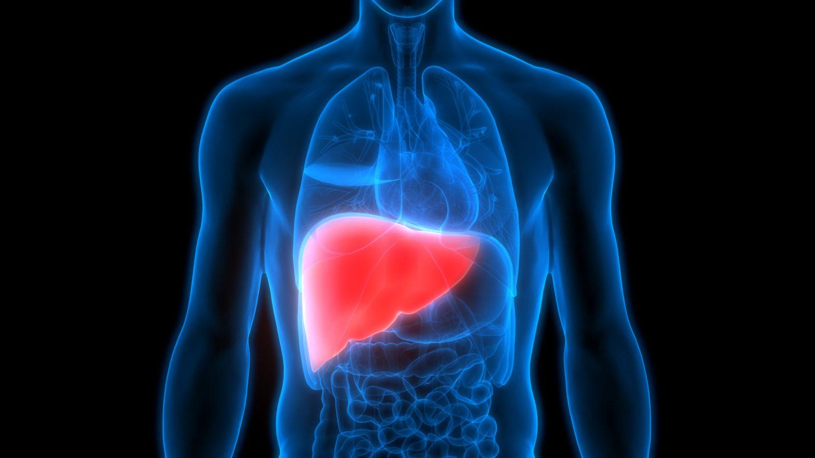 التغذية العلاجية لمرضى الكبد