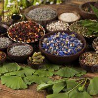 دراسة طب الأعشاب | دبلومة الطب البديل والأعشاب