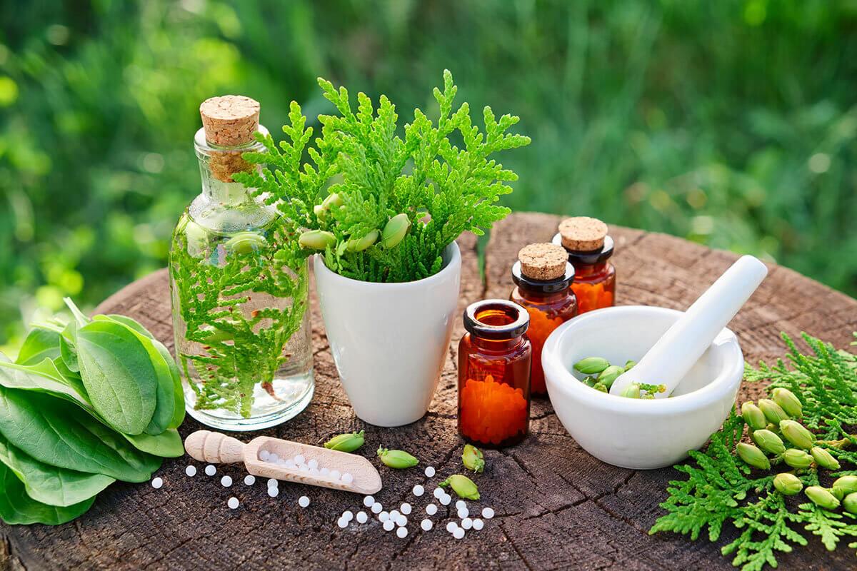 فوائد الأعشاب